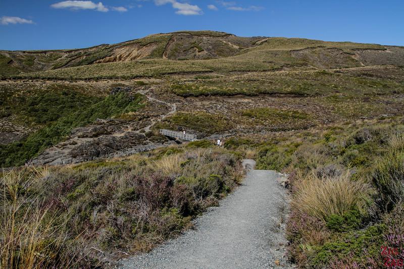Taranaki Falls Upper Track 4