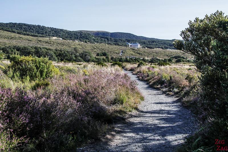 Randonnée dans le Tongariro - Retour vers le village Whakapapa 1