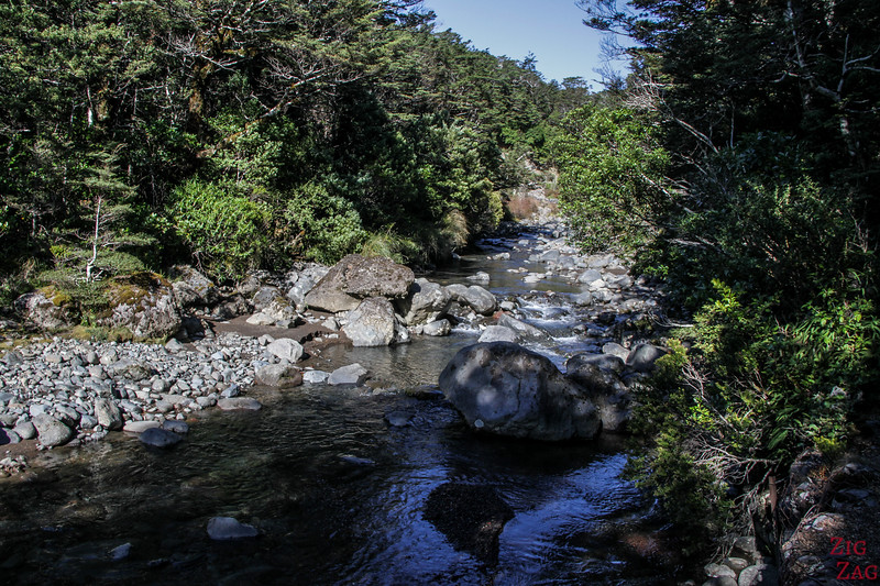 Wairere stream 3