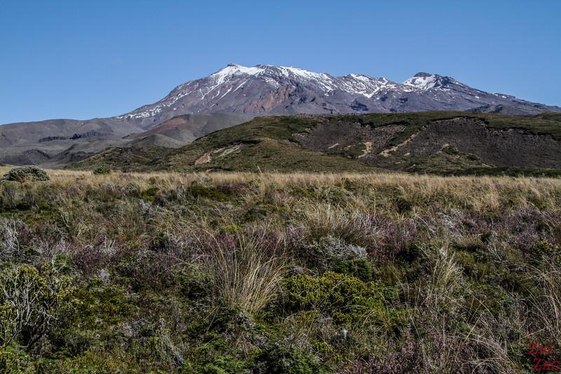 Sentier supérieur des chutes Taranaki - Vues des mont Ruapehu
