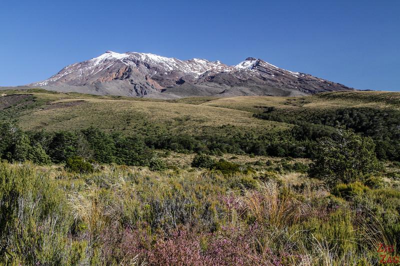 Randonnée dans le Tongariro - Retour vers le village Whakapapa 2