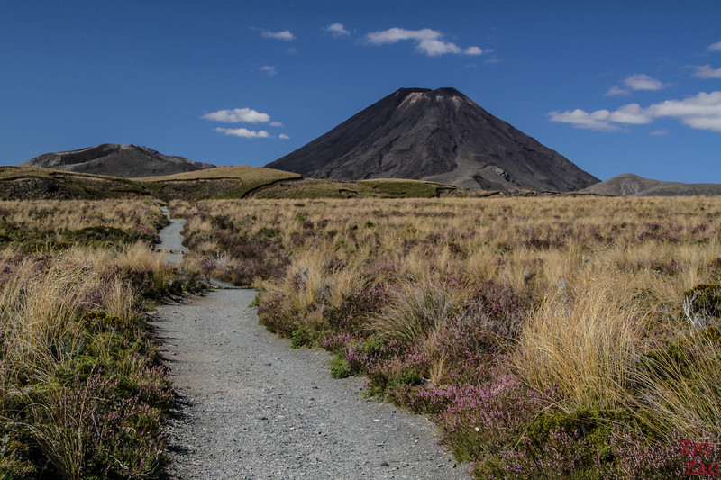 best things to do in New Zealand North Island - Tongariro