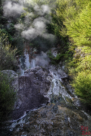 things to see at Orakei Korako park geysers