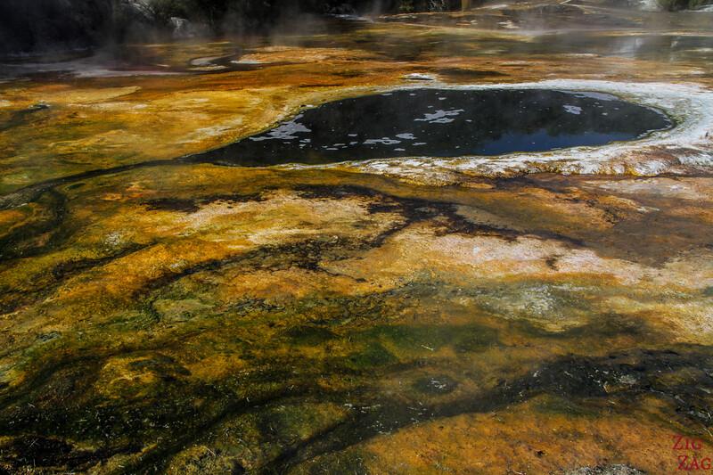 Que voir en Nouvelle Zélande île Nord - geothermal activity