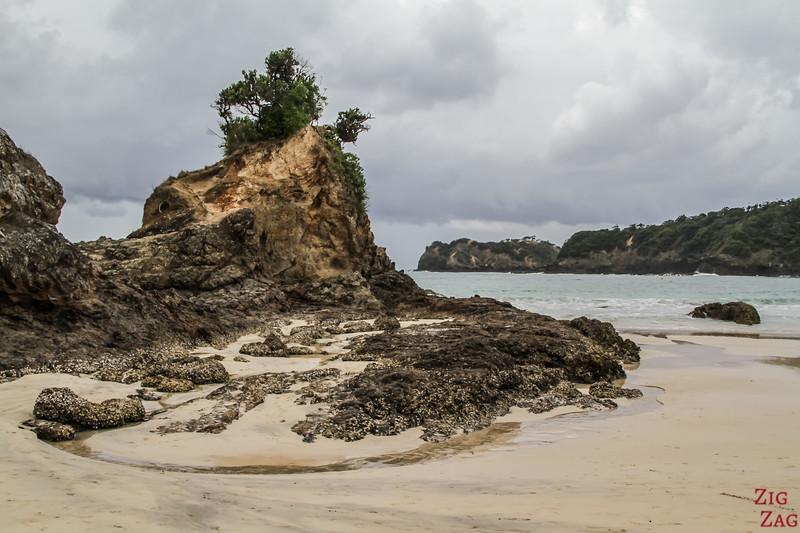 Matapouri Bay 1