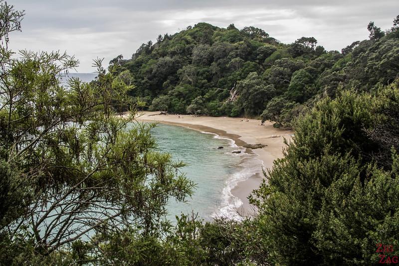 Whale Bay - best NZ to swim