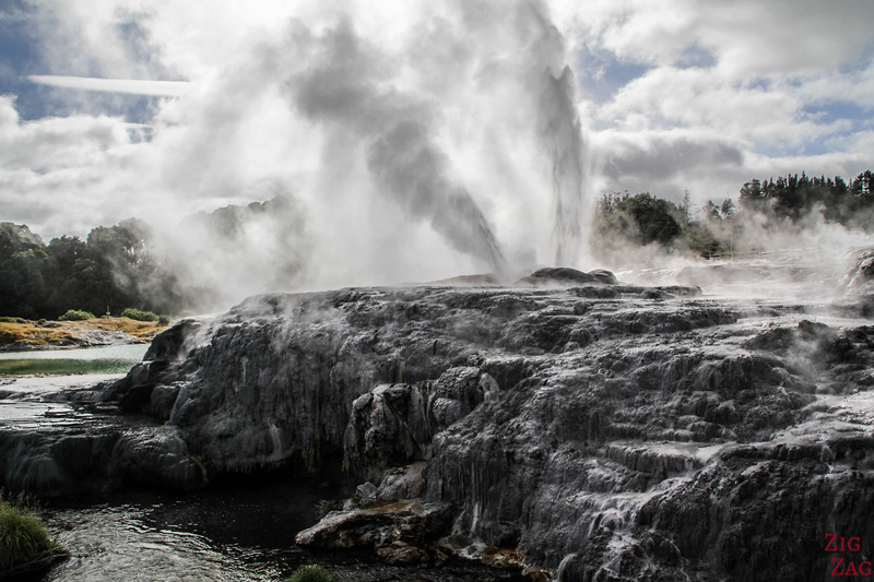 Best geothermal features in New Zealand - Te Puia