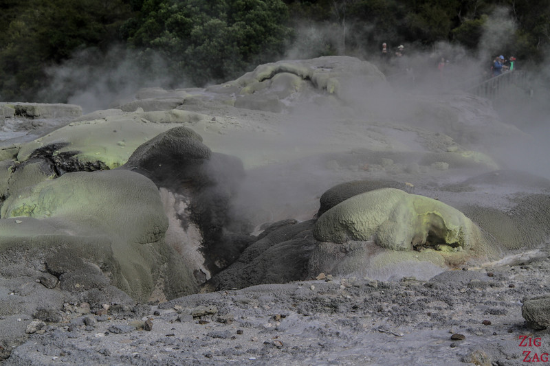Rotorua Attraction geothermique - Te Puia 1