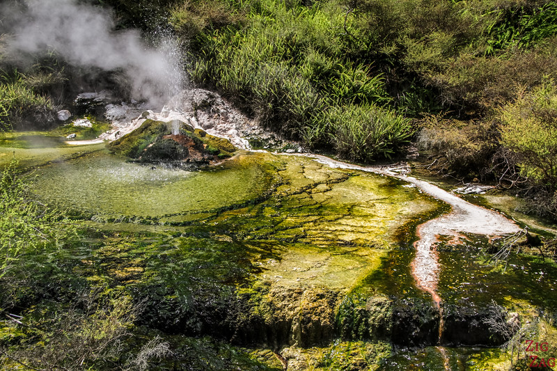 Best geothermal features in New Zealand - Waimangu