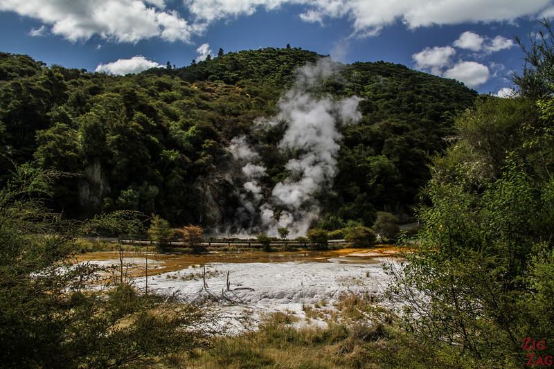 Rotorua Attraction geothermique - Waimangu 1