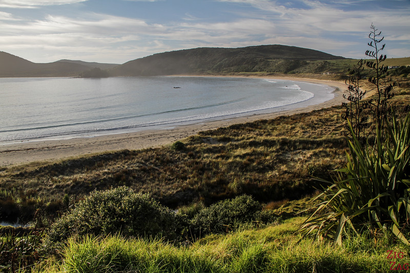 Matai Bay - Off the beaten track NZ North Island 2