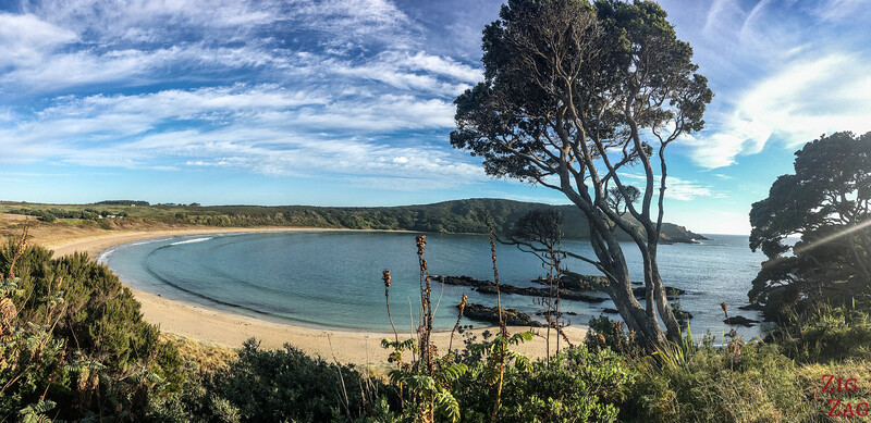 Strand Neuseeland - Matai