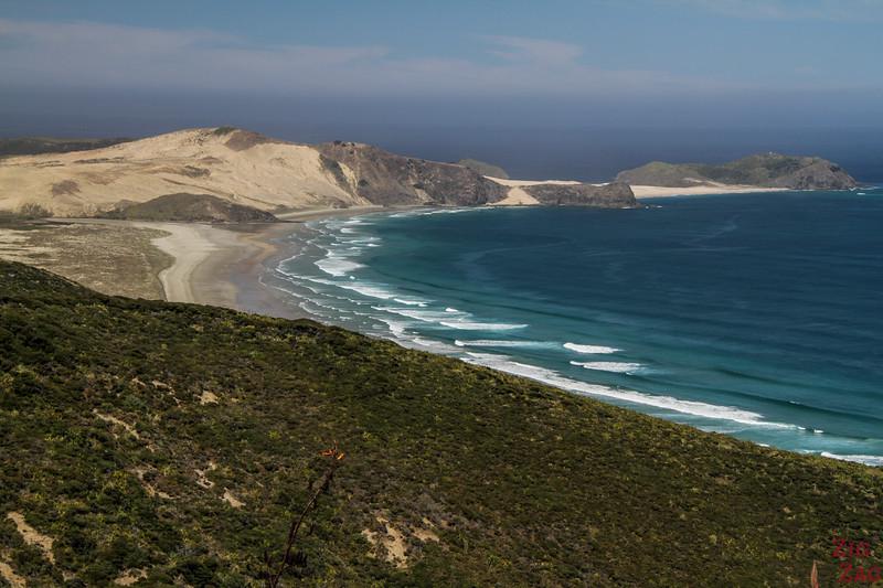 Why visit Cape Reinga New Zealand