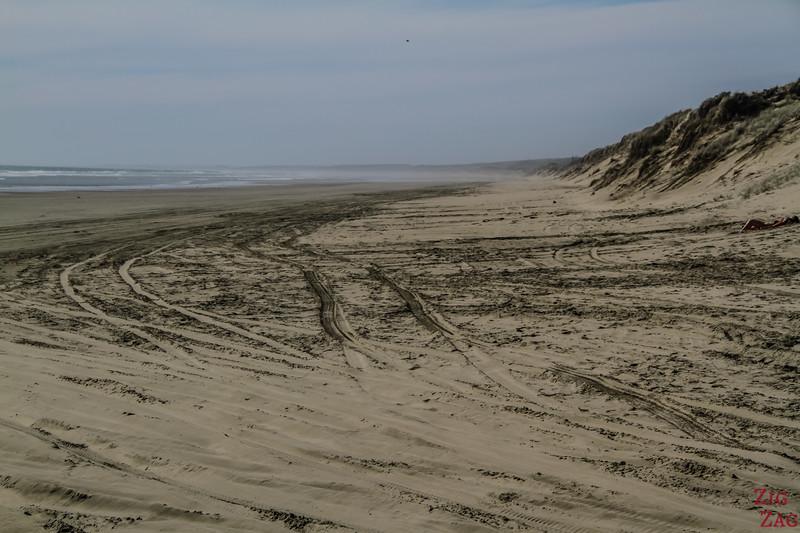 90 mile beach New Zealand photo