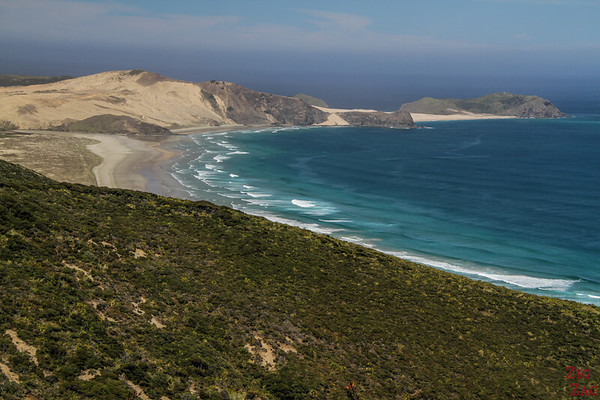 New Zealand North vs South island - Cape Reinga