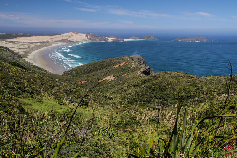 things to do at Cape Reinga - lighthouse walk 3
