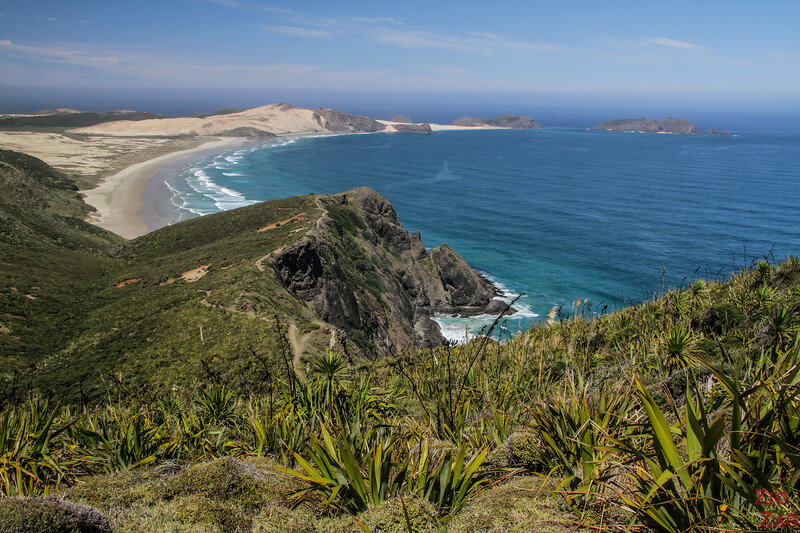 best things to do in New Zealand North Island - Cape Reinga