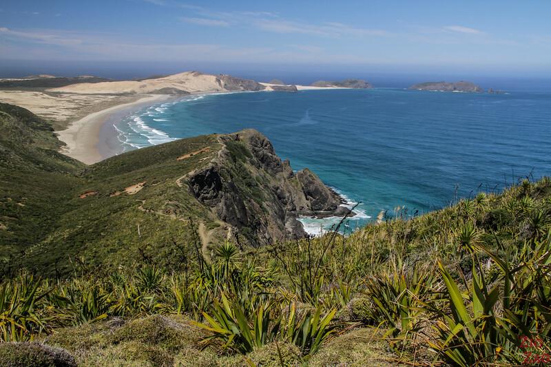 Que voir en Nouvelle Zélande île Nord - Cap Reinga
