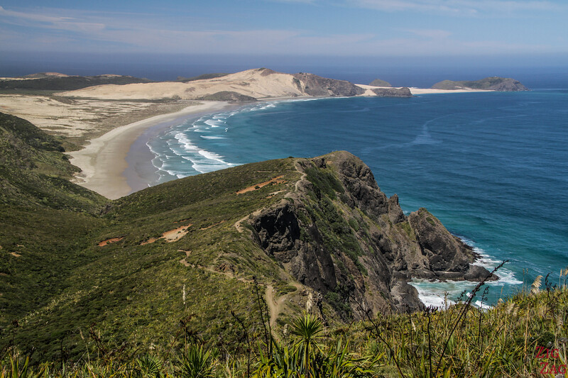 North Island New Zealand Itinerary 7 days - Cape Reinga