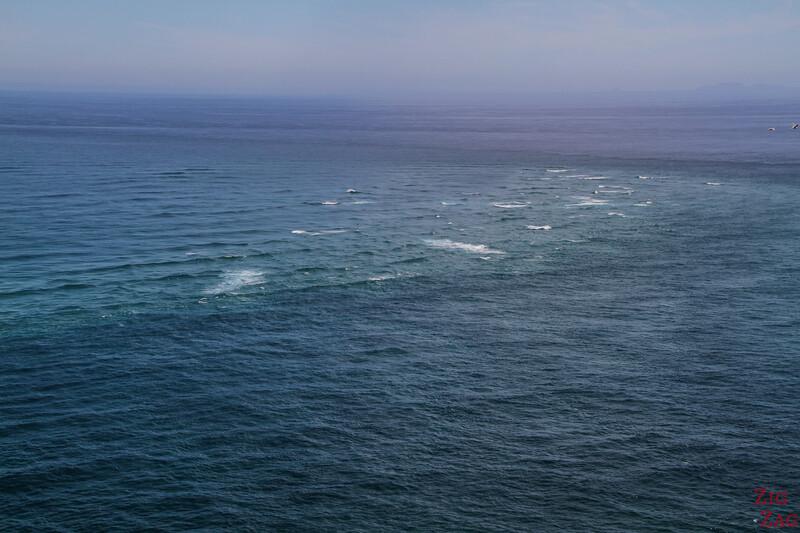 The Cape Reinga lighthouse - tasman sea meet Pacific oceanphotoholder