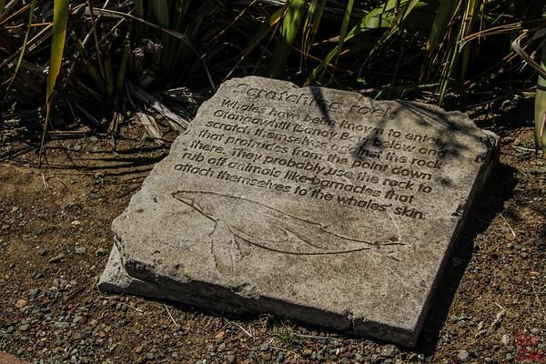 Cape Reinga lighthouse walk explanation signs 2