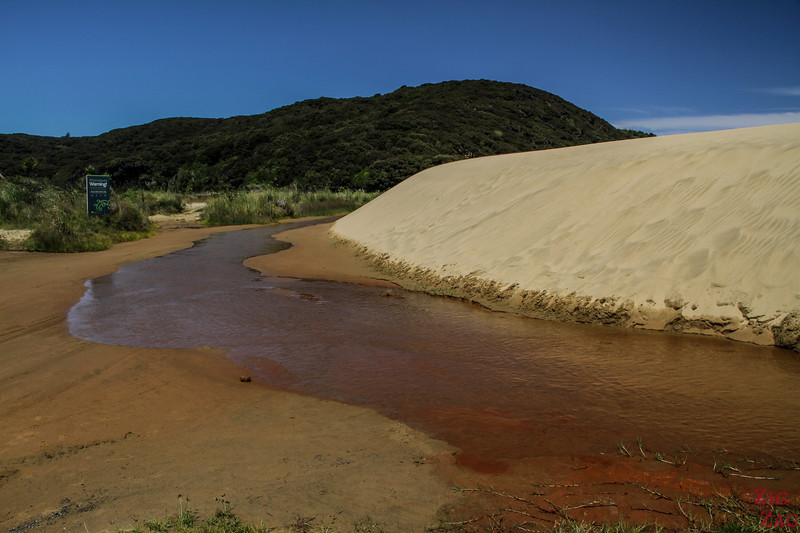 Te Paki Sand Dunes Cape Reinga New Zealand