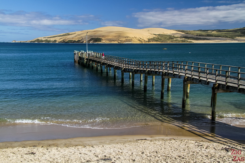 North Island New Zealand Itinerary 7 days - Hokianga