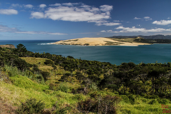 North Island New Zealand Itinerary 7 days - Hokianga 2