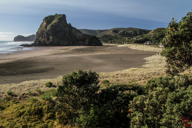 Best beaches in New Zealand - Piha