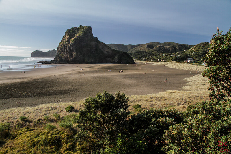 highlights in the North Island of New Zealand - Piha beach