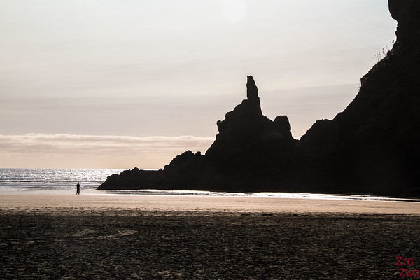 New Zealand North Island Itinerary 1 week - Piha beach 2