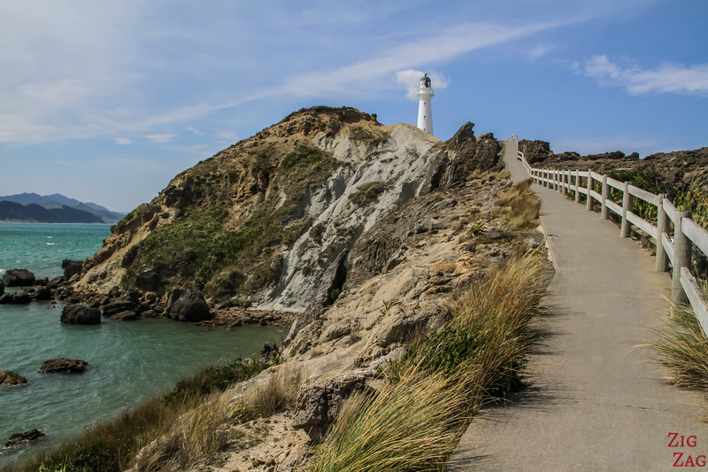 Marche du phare - Castlepoint Lighthouse Walk 3