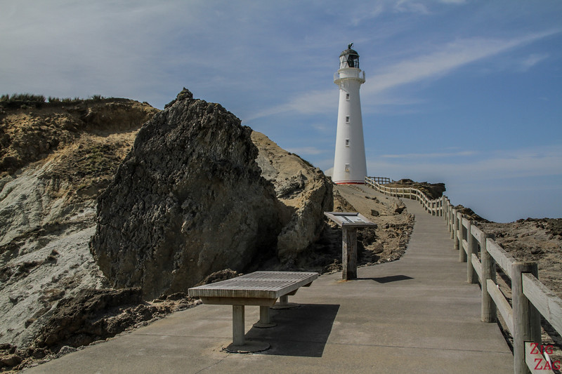 Marche du phare - Castlepoint Lighthouse Walk 4