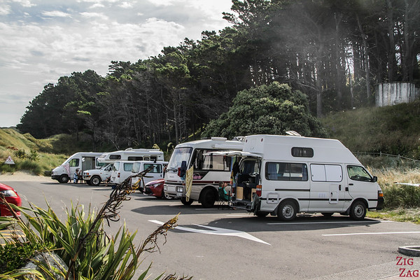 Castlepoint Scenic Reserve carpark