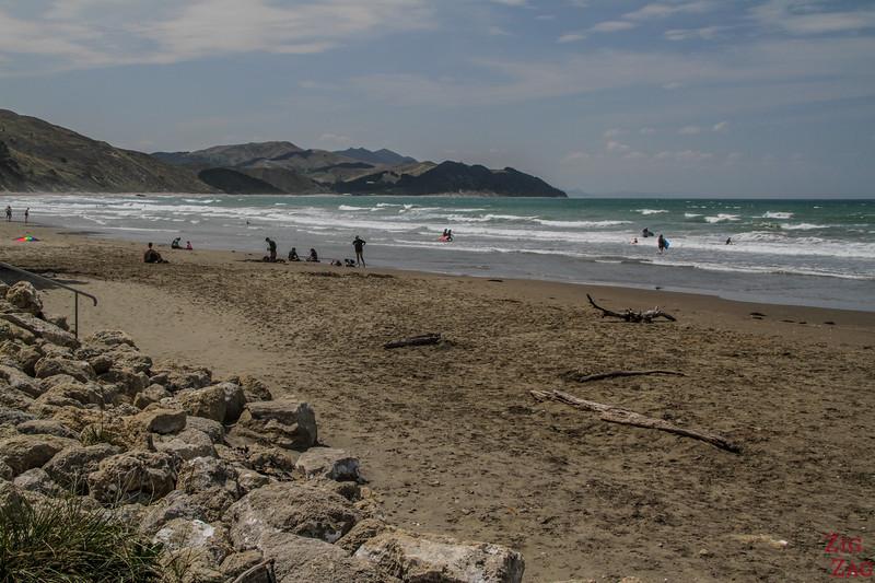 NZ Castlepoint Beach 3