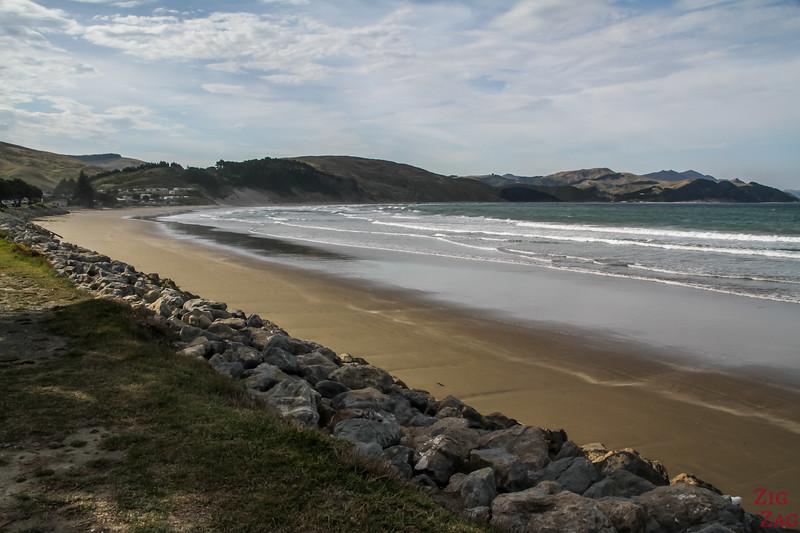NZ Castlepoint Beach 4