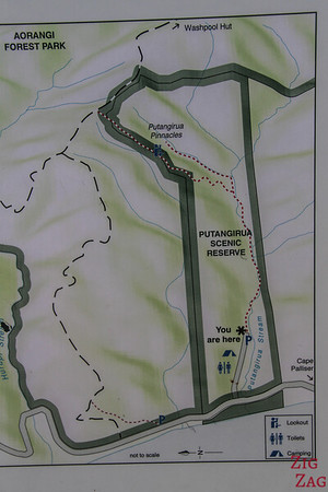 Putangirua Pinnacles Scenic Reserve - Map
