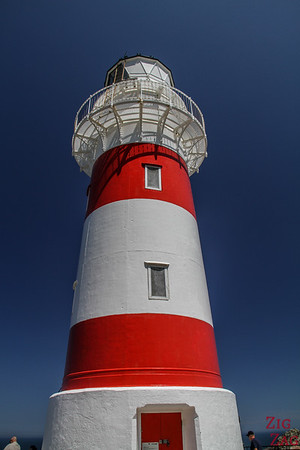 Cape Palliser Lighthouse color
