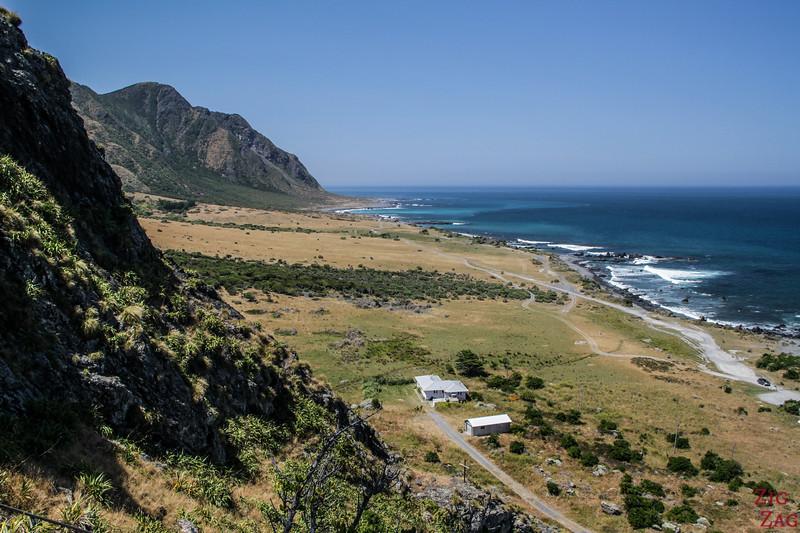 Phare du Cap Palliser - point de vue 2