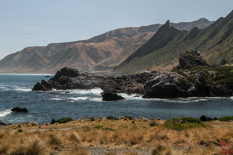 Cape Palliser Road 7