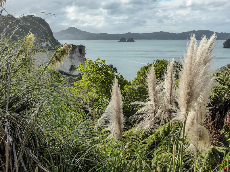 Cathedral Cove Walk - views 3