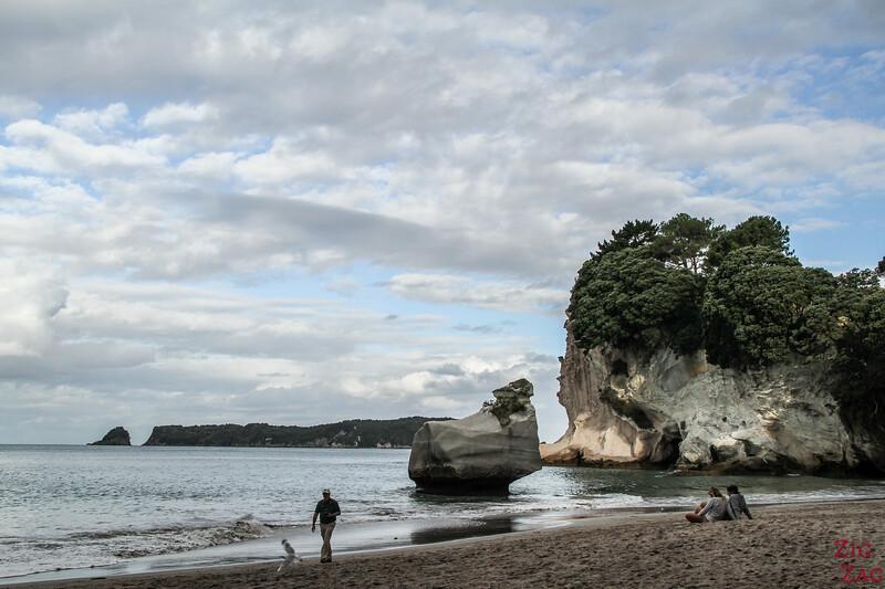 Coromandel Cathedral Cove beach - Mares Leg cove 2
