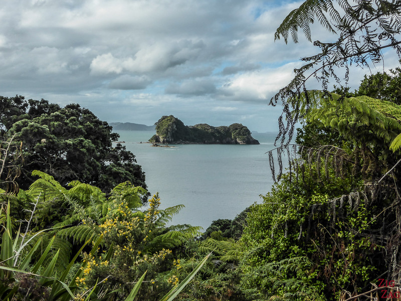 Cathedral Cove Walk - views 4