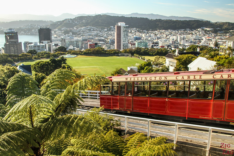 Where to stay in Wellington 1