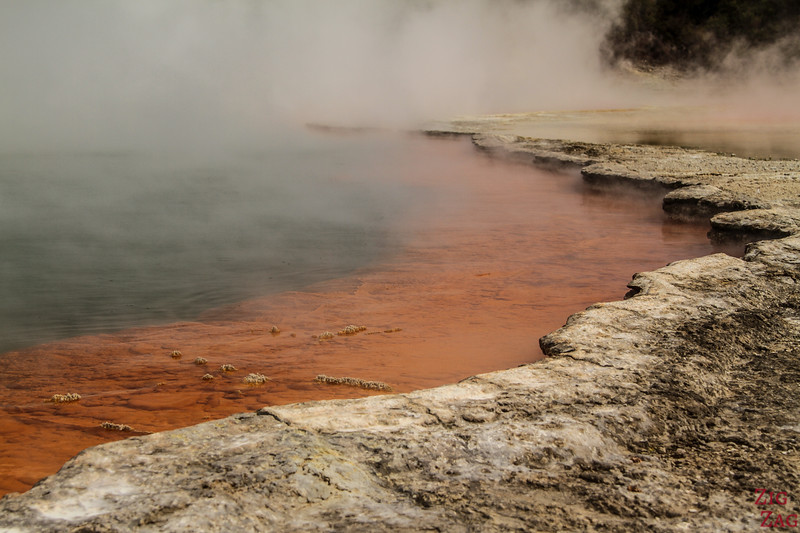 best things to do in New Zealand North Island - wai-to-tapu