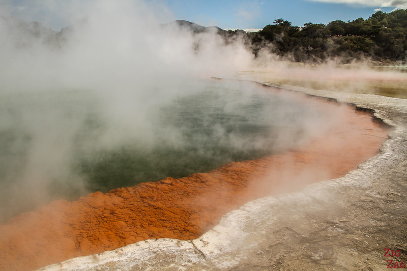 Best geothermal features in New Zealand - Champagne pool