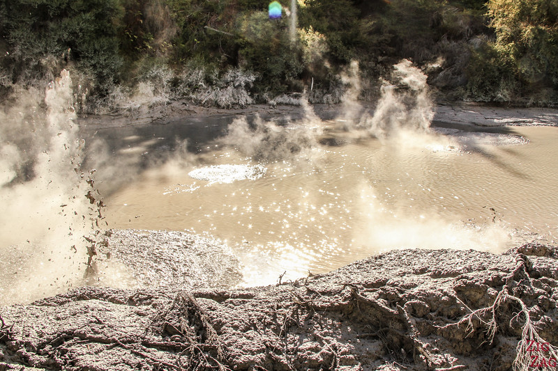Wai-O-Tapu Mud Pools (Schlammpools)