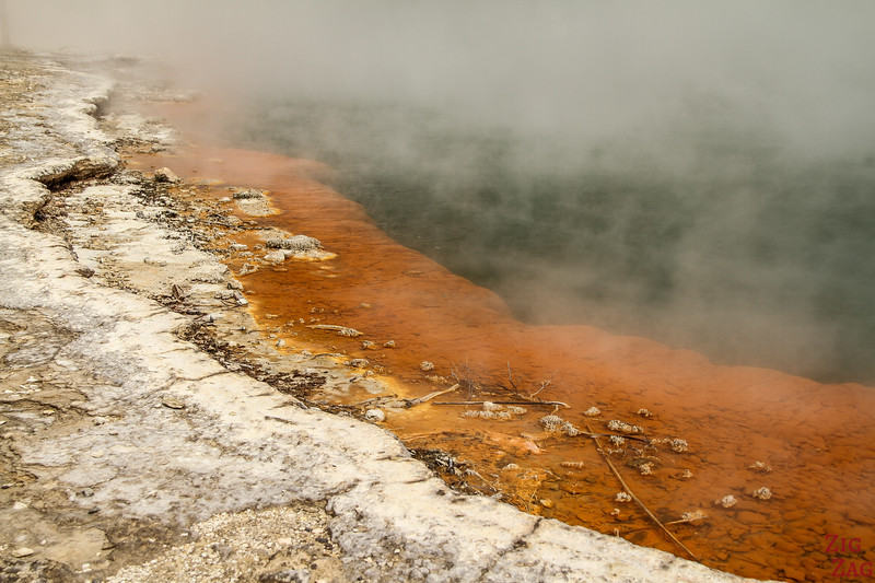 The Champagne Pool - Wai-O-Tapu thermal valley New Zealand 3