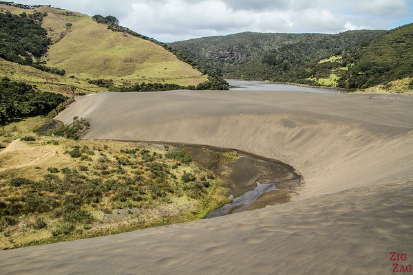 New Zealand North Island Itinerary 1 week - Bethells