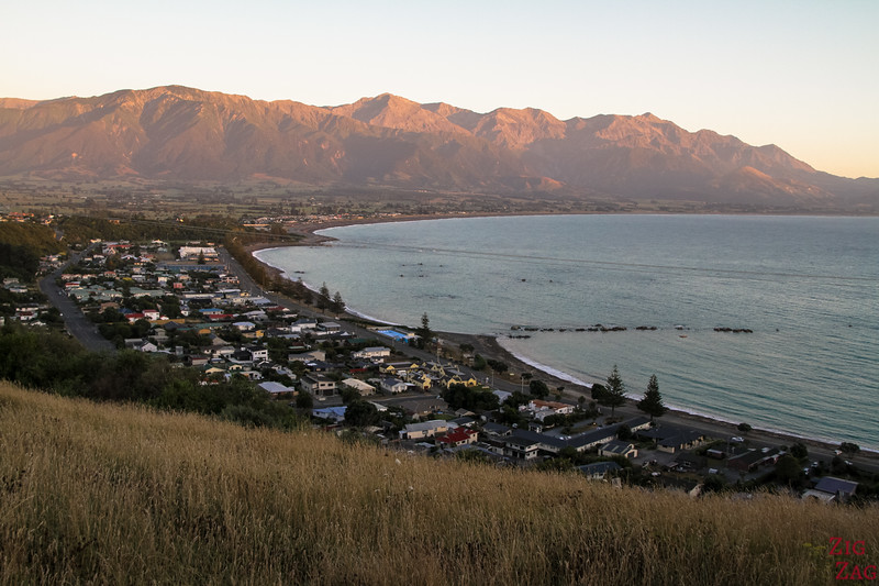 New Zealand South Island Itinerary 7 days - Kaikoura